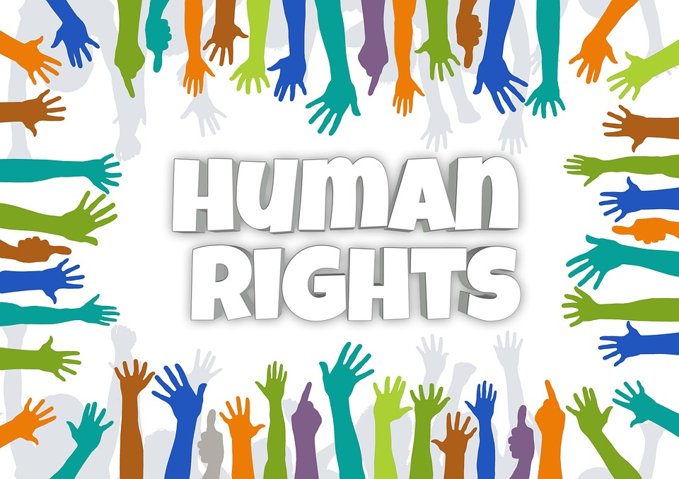 Nhân quyền quốc tế kêu gọi trả tự do nhà hoạt động Trần Thị Nga