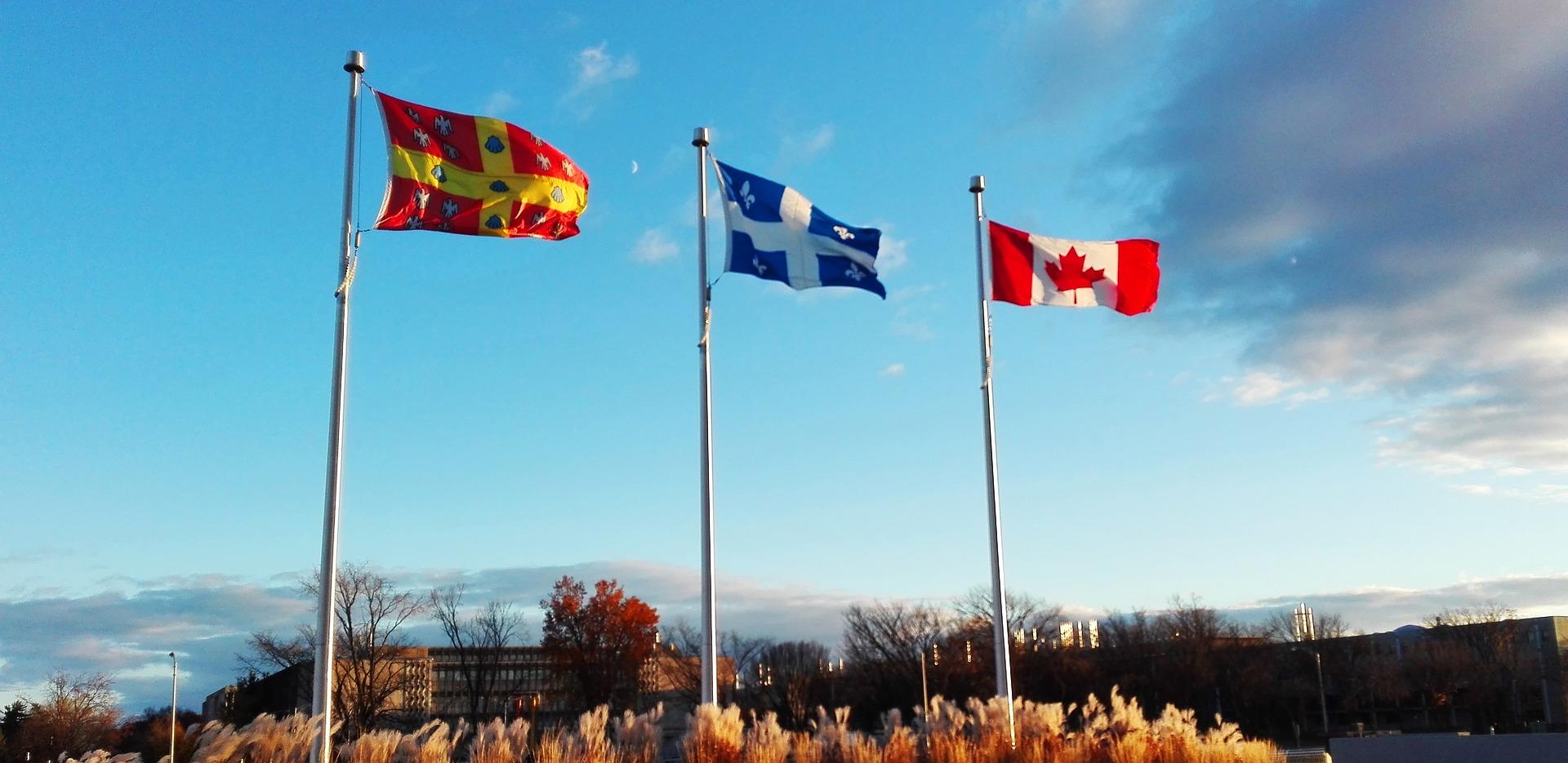 Hàng trăm bác sĩ ở tỉnh Quebec đặc trọng đến dịch vụ công, họ đã mãn nguyện với tiền lương của họ.